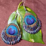 Picture of earrings